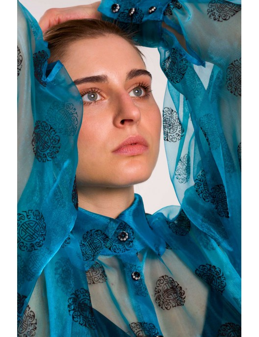 A blue transparent blouse...